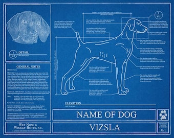 Personalized dog blueprints custom pet by wetnosewigglybutts personalized vizsla blueprint vizsla art vizsla wall art vizsla gift vizsla print malvernweather Image collections
