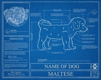 Personalized dog blueprints custom pet by wetnosewigglybutts personalized maltese blueprint maltese art maltese wall art maltese gift maltese print malvernweather Image collections