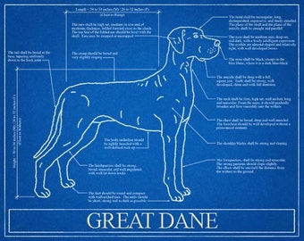 Personalized dog blueprints custom pet by wetnosewigglybutts great dane blueprint elevation great dane art great dane wall art great dane gift great dane print malvernweather Image collections