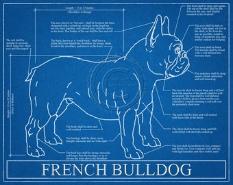 Personalized dog blueprints custom pet by wetnosewigglybutts french bulldog blueprint elevation french bulldog art french bulldog wall art french bulldog gift french bulldog print malvernweather Image collections