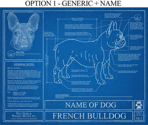 Personalized french bulldog blueprint french bulldog art etsy image 0 malvernweather Image collections