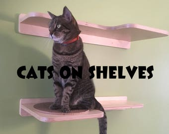 Pair of Cat Shelves with replacable cardboard scratch pads