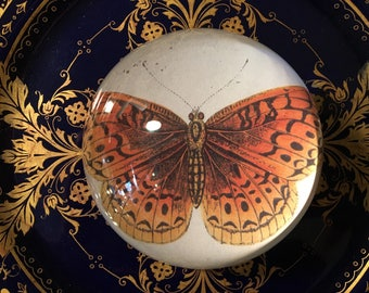 """Decoupaged paperweight of 1800's butterfly print made by me. 3"""" Round x 3"""" High. Clear glass treasure for desk or table. FREE SHIPPING"""