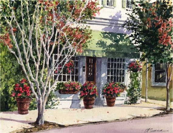 "Green Awning by Carol Ann Curran - Fine Art Print - Single White Mat 11"" x 14"" (Image Size 8"" x 10"") - Charleston, SC"