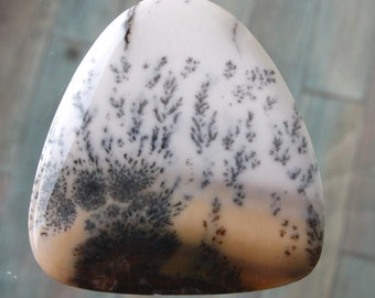 Graceful Large Dendritic Landscape Agate -The Big Triangle