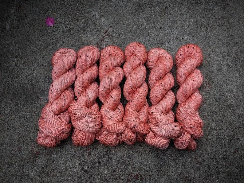 Coral on Brigadoon image 0