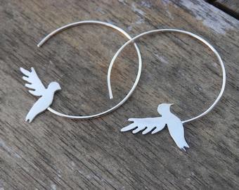 Creole Earrings solid silver 925 Hummingbird
