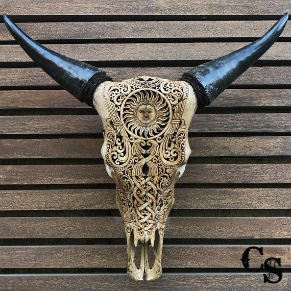 real carved cow skull head sun design bull skull steer etsy