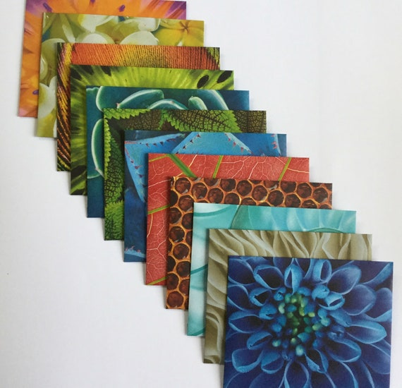 Snail Mail Boxed Notes