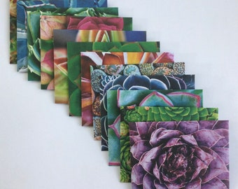 Succulent envelopes, plant, botanical snail mail, cactus paper, handmade envelopes, green thumb, small envelopes,  set of 12