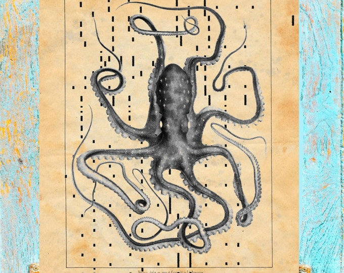 Antique Player piano paper octopus nautical art print PPOK223