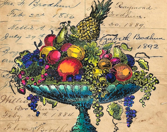 Vintage fruit bowl still life colorful image art print FB0784