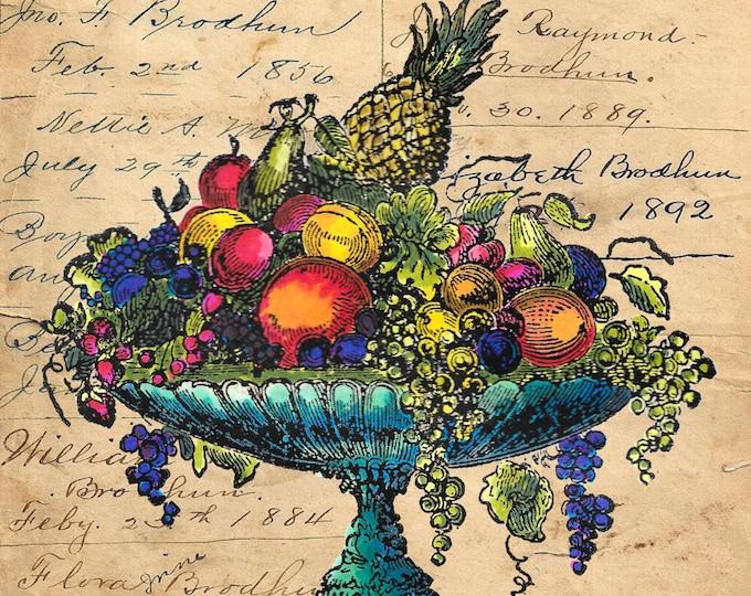 Vintage fruit bowl still life colorful image art print FB0784