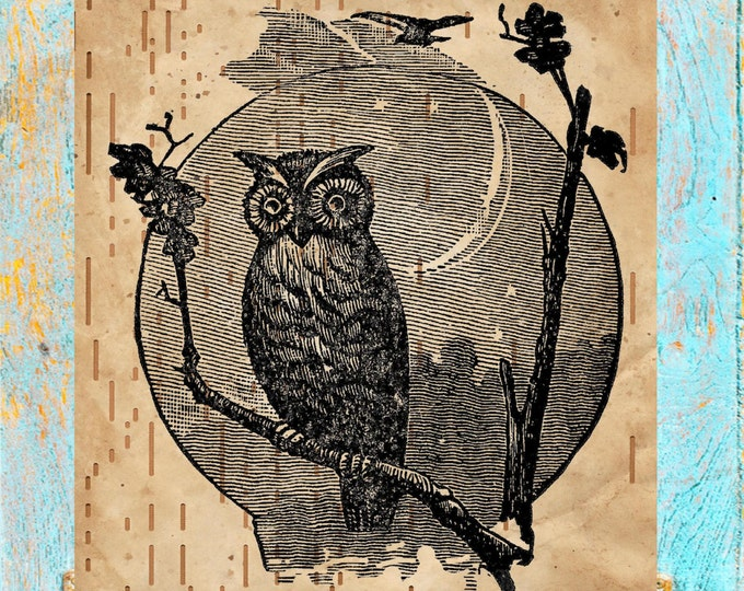 Player piano paper print of owl on branch, authentic antique player piano paper OPP1345