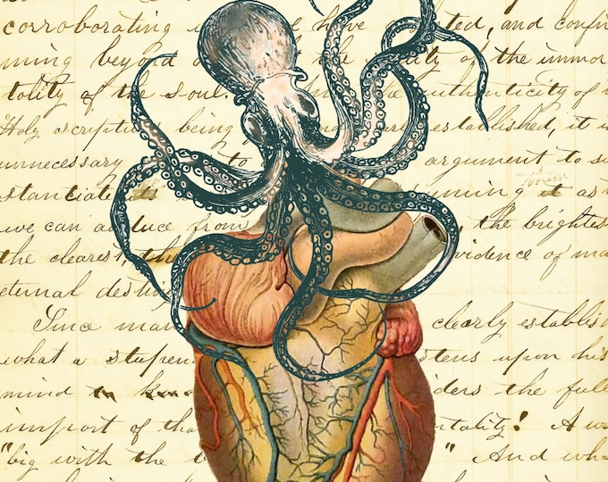 OctoHeart Octopus attacking heart vintage art print doctor gift medical school gift poster OH298