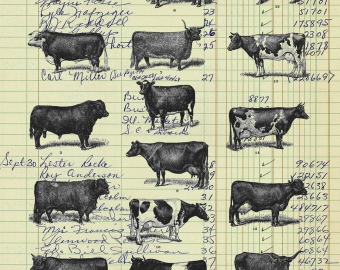 Real Vintage Ledger Paper Print Cow Study from 19th Century decor bovine farm animal  art print wall farmhouse rustic 1800s VP05535