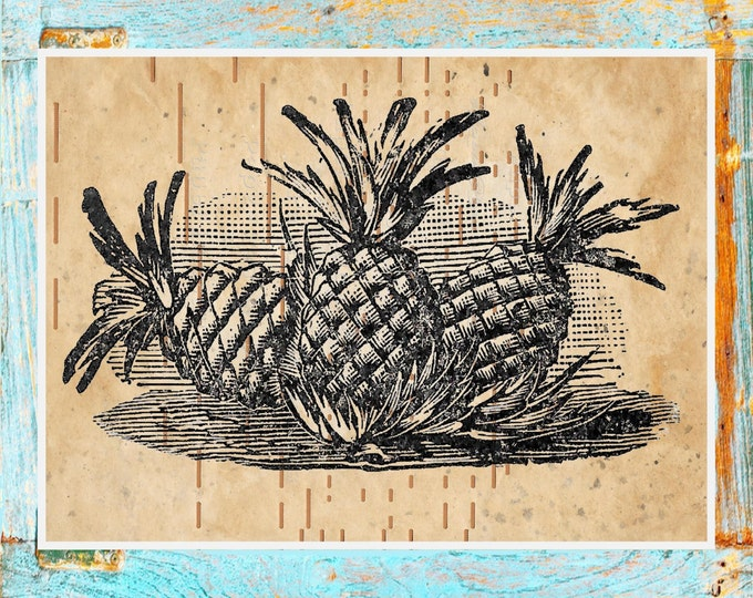 Antique Player piano art print | beautifully upcycled pineapple print | handmade antique paper print PINE123