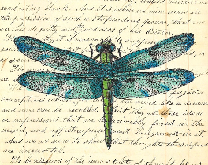 Vintage Blue dragonfly insect colorful image art print VBD397