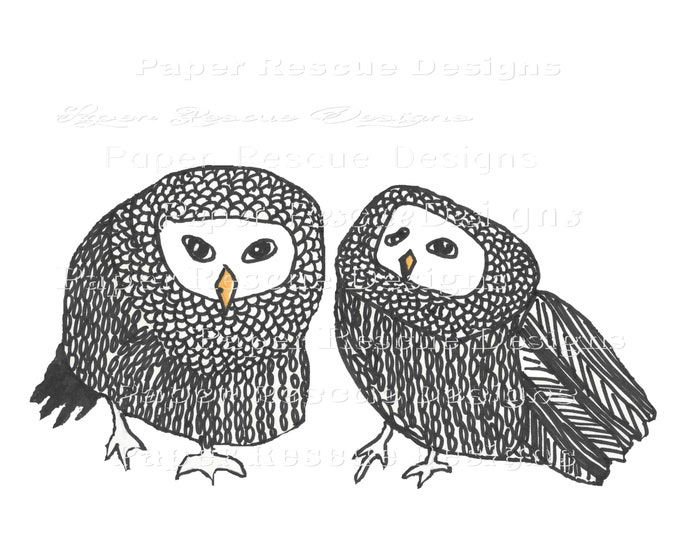 Owls on white background original art print | Great for a dorm room OWL19