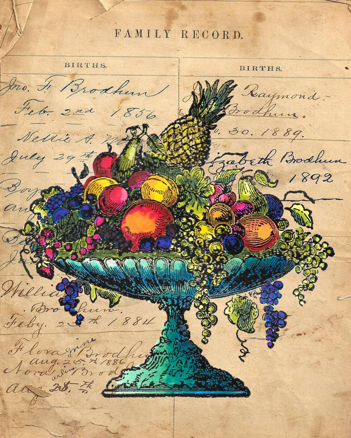 Vintage fruit bowl still life colorful image on print of antique ...