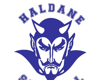 Haldane Blue Devils Vinyl Decal : School Book Sticker