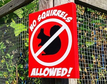 Large Print No Squirrels Allowed Garden Sign