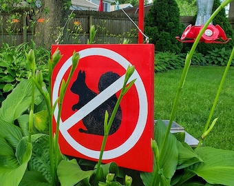 Large No Squirrels Allowed No Entry Garden Sign