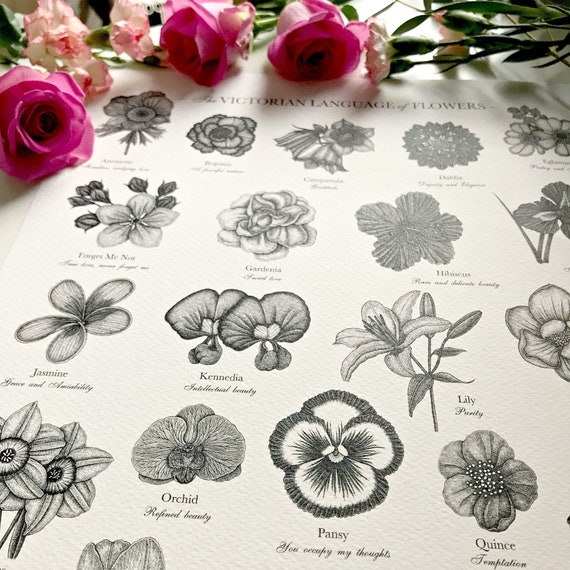 Victorian Language of Flowers Print - A to Z of Flowers - Flower Alphabet - Floriography Print - Floral Print - Victorian Flower Meanings