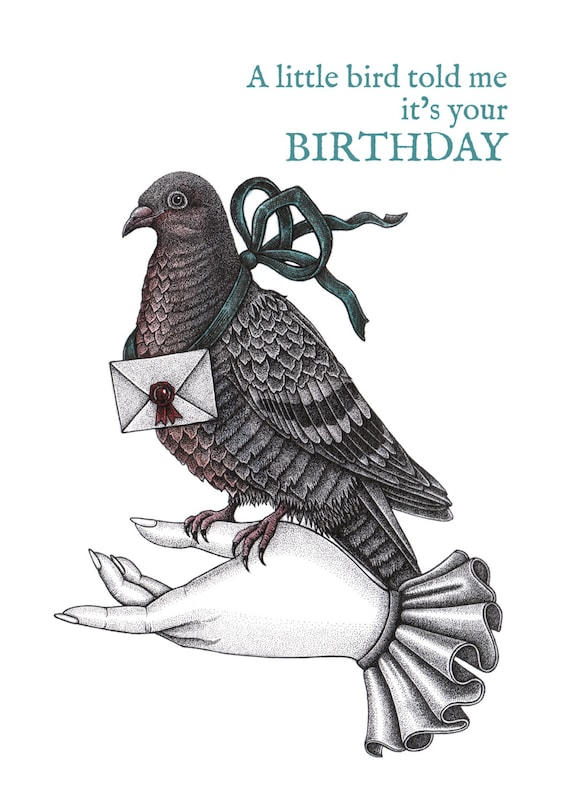 Carrier Pigeon Birthday Card Messenger Bird Bird Birthday