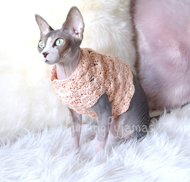 RoseVêtementsAnimaux Vêtements Les ChatSphynxPour De Sphynx Chat PullPull 8wPOnk0