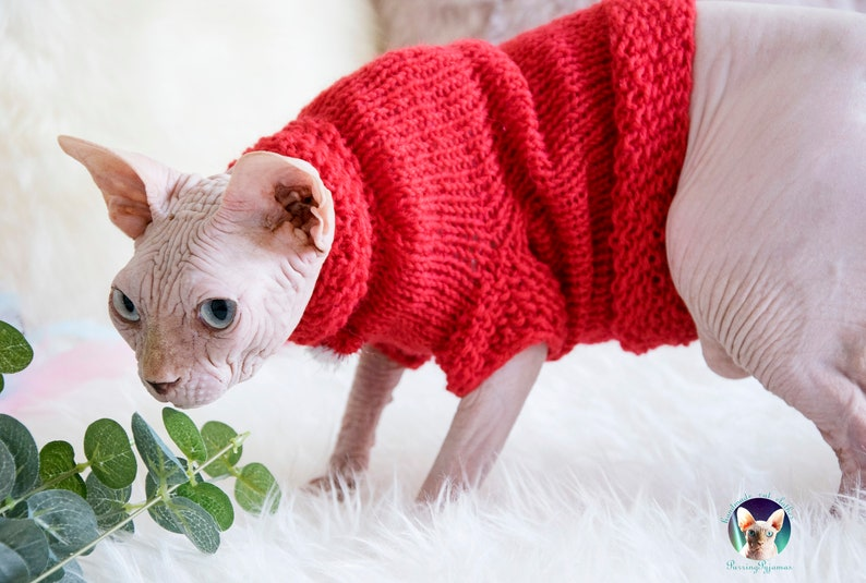 Cat clothes sphynx clothes sphynx sweater cat sweater red image 0