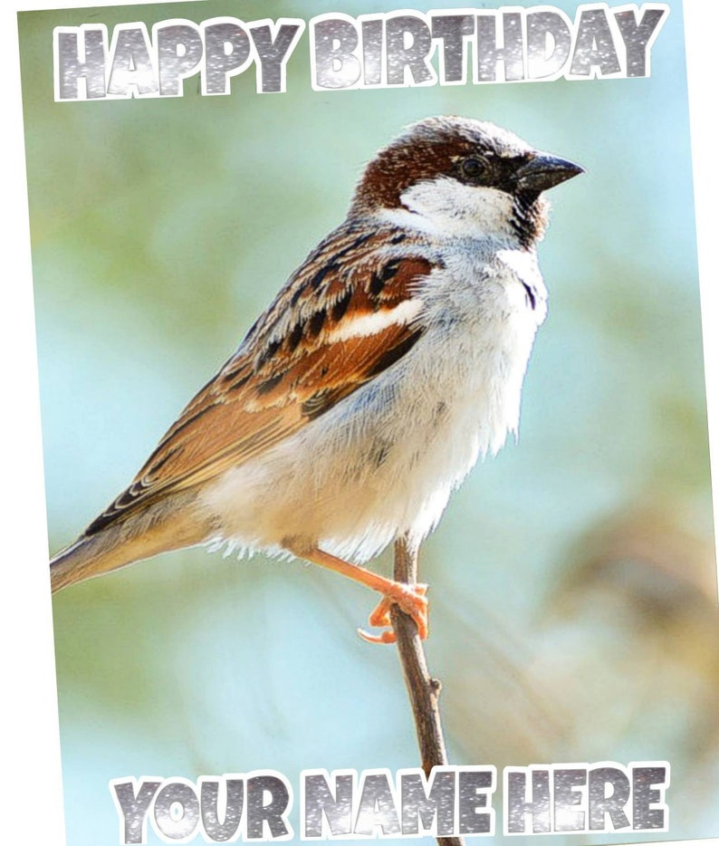 Sparrow Garden Bird Birthday Personalised Pick Your Occasion Greeting Card Silver Glitter HMBI05