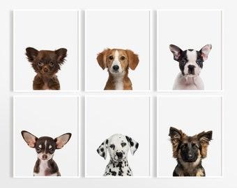bdb5f3fd434b Puppy Dog Prints, Nursery Puppy Print, Animal Nursery Art, Baby Animal  Nursery, Dog Photography, Dog Wall Art, Puppy Nursery Decor.  DecorartDesign. 5 out of ...