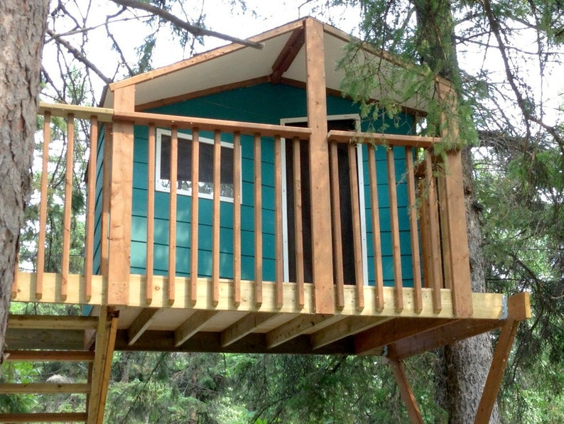 Zelkova treehouse  plans to build in two trees or free image 0