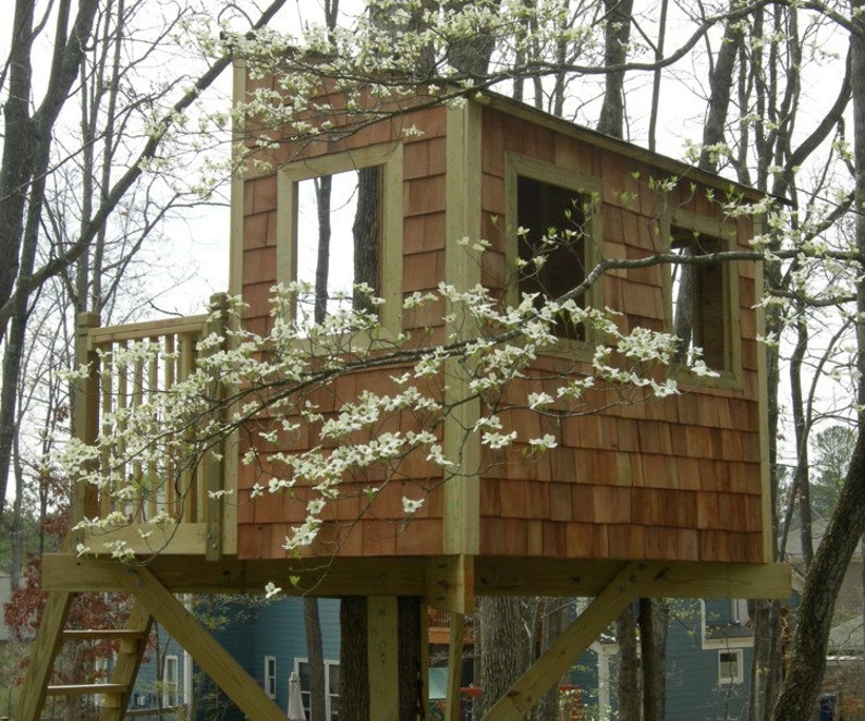 Kauri treehouse  plans to build in one tree or free standing image 0