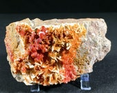 Gorgeous Vanadinite cryst...