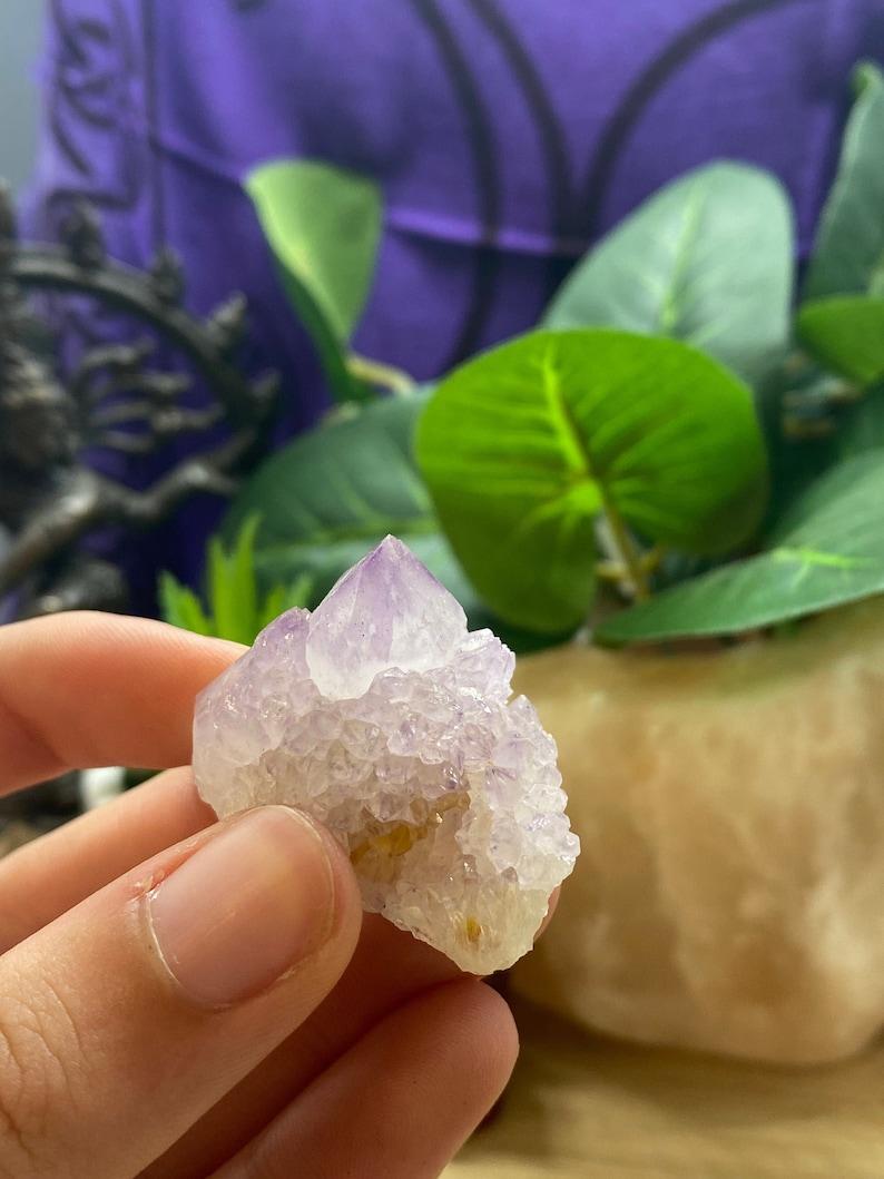 Cactus Amethyst crystal cluster geode CQT5 image 0