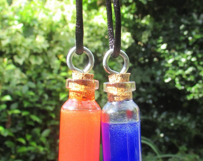 Health and Mana Adventure Gamer's Potion Bottle Pendant Set (pair)