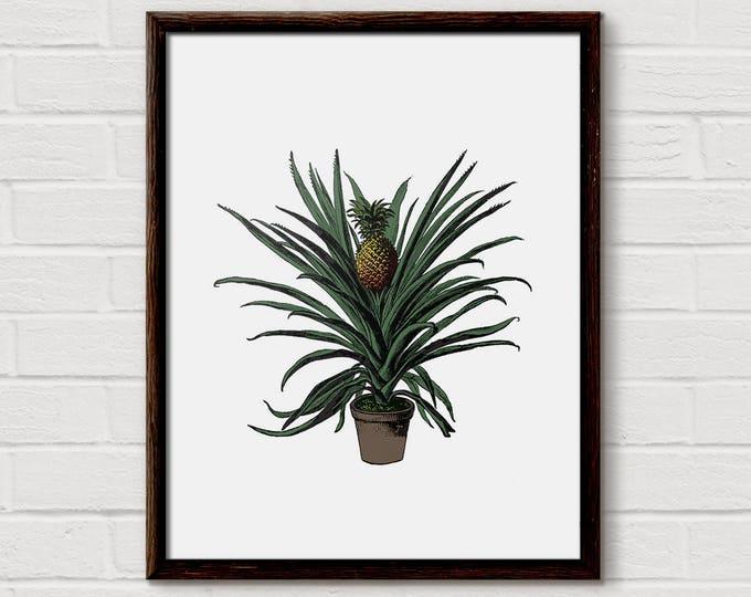 Pineapple Wall Art, Pineapple Art, Pineapple Print, Gold Pineapple, Vintage Style, Ananas Print, Pineapple Quote, wall print pineapple