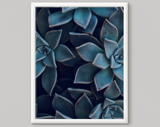 Blue Cactus Print, Succulent Printable Art, Succulent Print, Instant Download, Succulent Art, Large Wall Art, Cactus Print, Cactus Decor