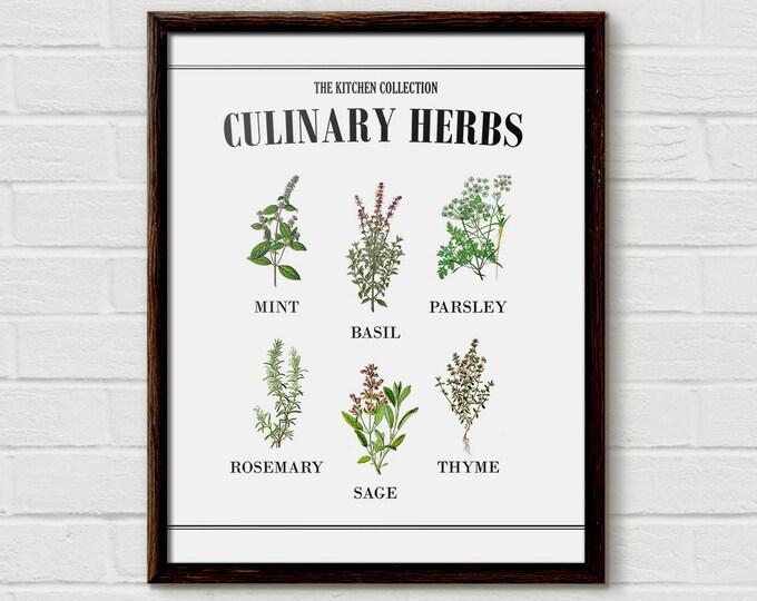 Botanical Herb Print, Herb Prints, Kitchen Herb Print, Herbs Chart, Herbs Poster, Botanical Chart, Culinary Herbs, Vintage Botanical Kitchen