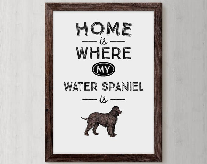 American Water Spaniel, Poster, Wall Art, Home Decor, Kids Wall Art, Play Room Wall Art, New Puppy Gift, Gift Idea Dog, Dog Print, Dog Owner
