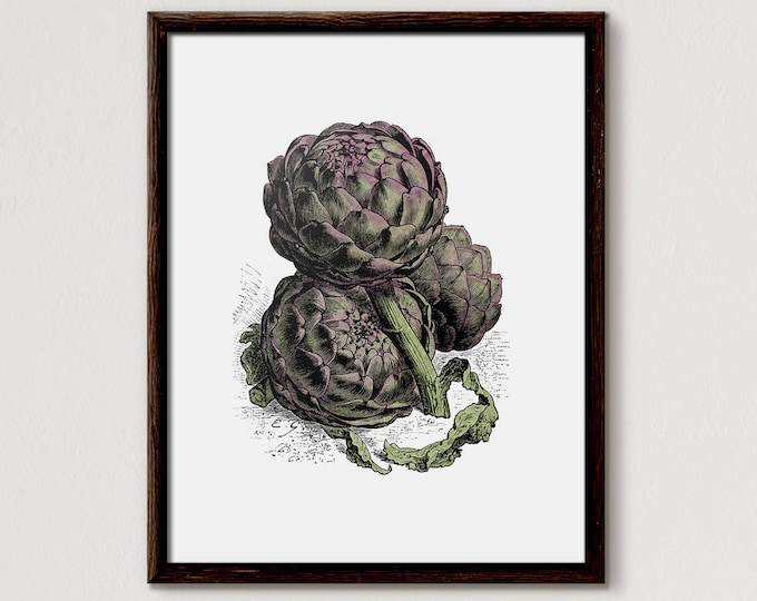 Artichoke, artichoke print, home decor, vegetable, kitchen art, kitchen decor, botanical print, vegetable print, artichokes, artichoke art