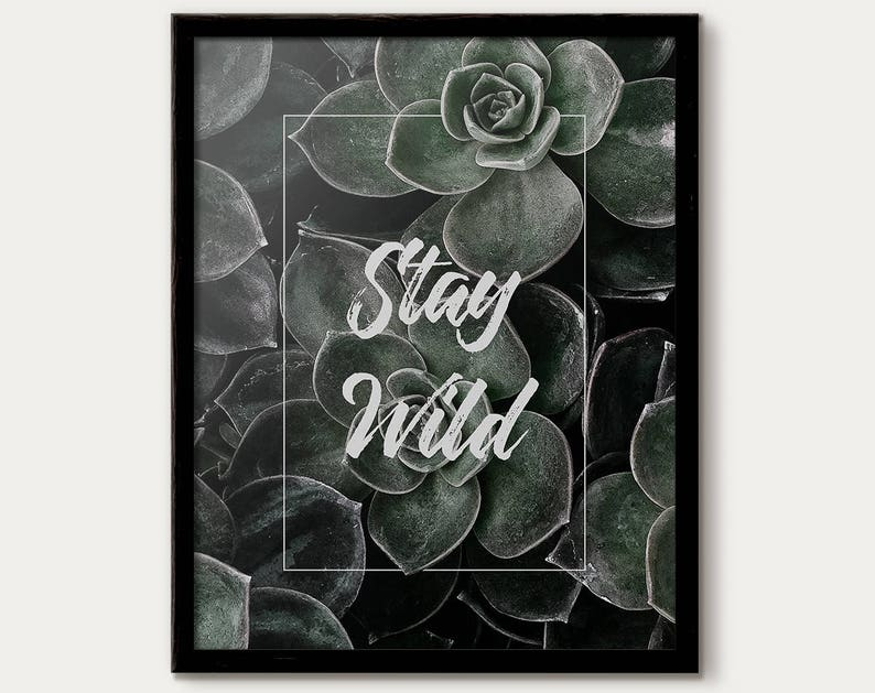 stay wild succulent print quotes home decor inspirational