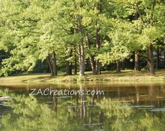 Lake and Trees Digital Image