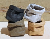 Paper planter, Air planters, washable paper bags, tiny pot, desk organizer, office, display, business card holder, wabi-sabi