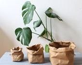 Brown Paper bag, washable paper bag, kraft paper bag, planter, hamper, pot, natural, rustic, Earthfriendly, Eco, Earth tones, plastic free