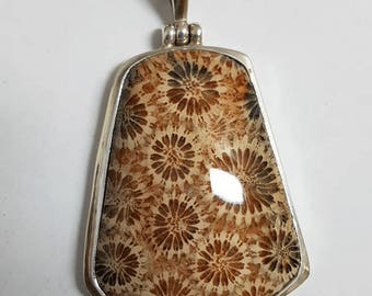 Fossil Coral Pendant #11