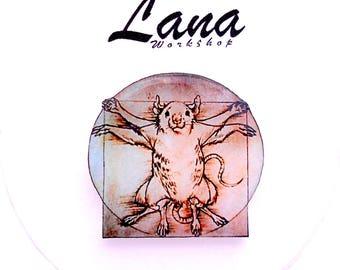 Vitruvian rat Rat Leonardo da Vinci, pin Animal brooch,  animal jewelry, rat brooch, rat jewelry, rat clay, rat pin.