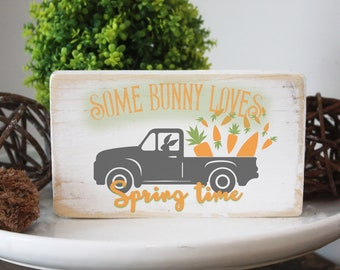 Easter wood sign / some bunny loves spring time / modern farmhouse decor